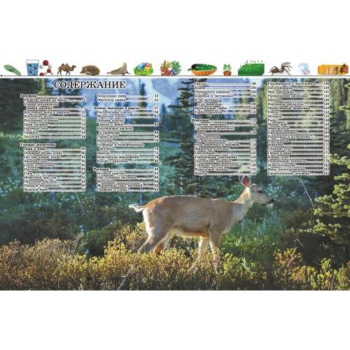 Большая энциклопедия. Животный и растительный мир